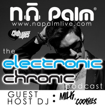 Na Palm Electronic Chronic