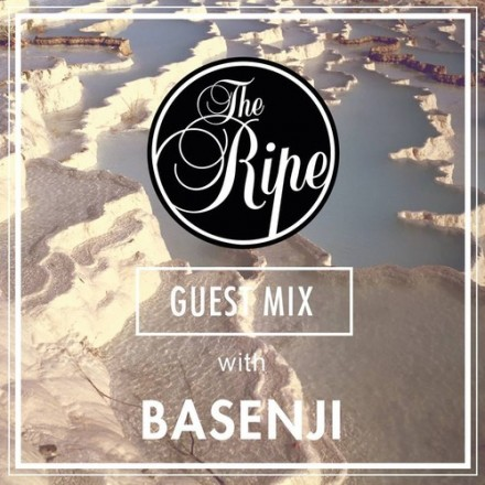 [QUICK MIX - CHILL/ELECTRONIC] Basenji - The Ripe Guest Mix