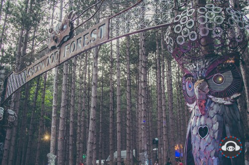 Electric Forest 2014 entrance