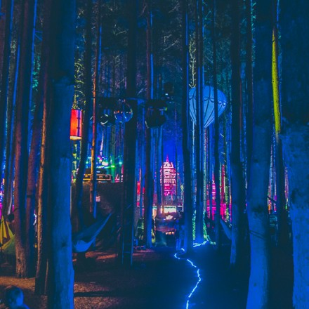 [PHOTO RECAP] The Mind Blowing Sights Of Electric Forest 2014