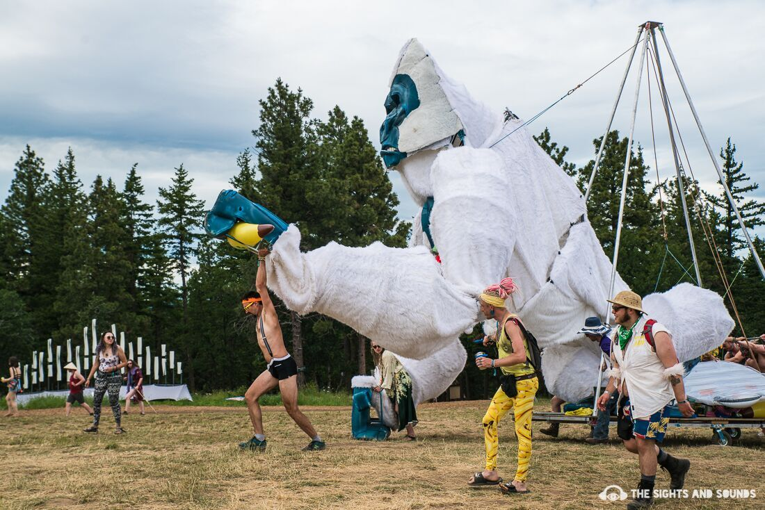 Best In Show: How What The Festival Turns Attendees Into Performers