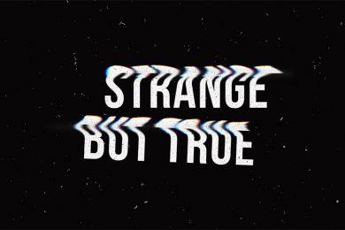 SBT4-Website copy