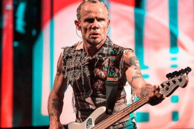 Flea 1 – Joe Ruffalo