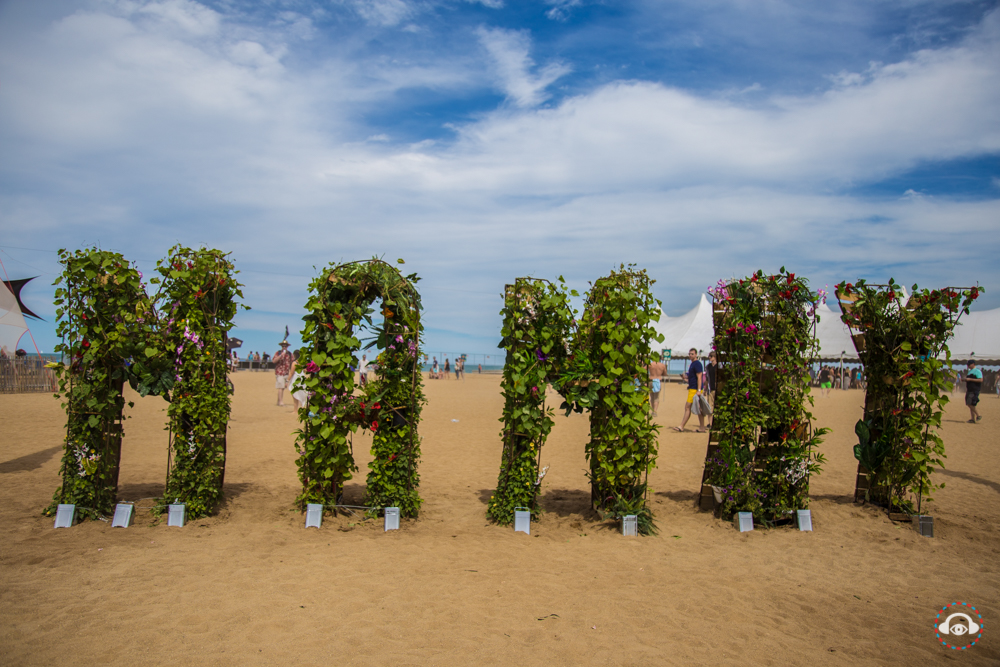 Mamby on the Beach Brings Fresh Festival Vibes to Chicago