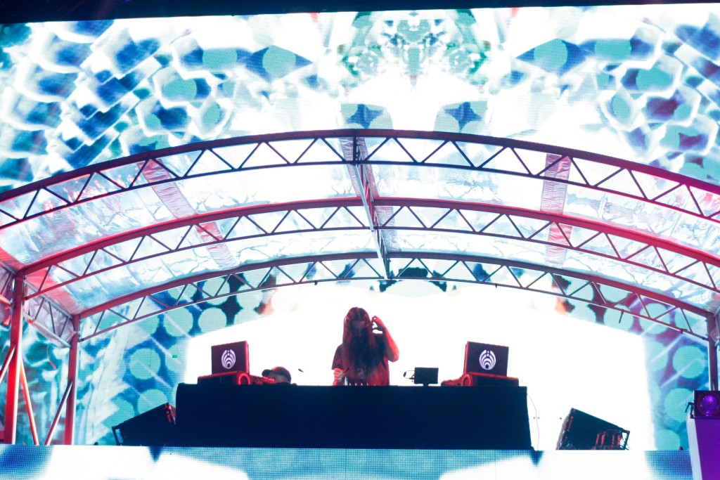 The Sights and Sounds Electric Zoo 2016 27